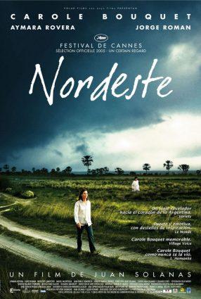 Cartaz do filme DESEJO DE SER MÃE – Nordeste