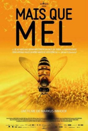 Cartaz do filme MAIS QUE MEL – More Than Honey
