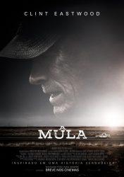 A MULA – THE MULE