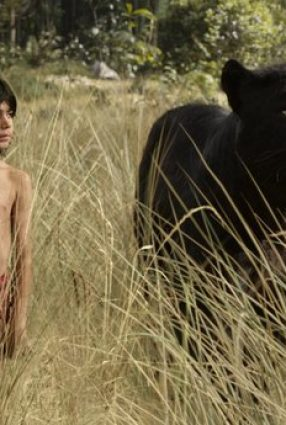 Cartaz do filme MOGLI: O MENINO LOGO – The Jungle Book