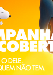 CAMPANHA DO COBERTOR