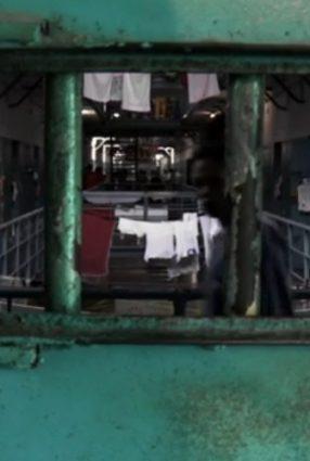 Cartaz do filme SEM PENA